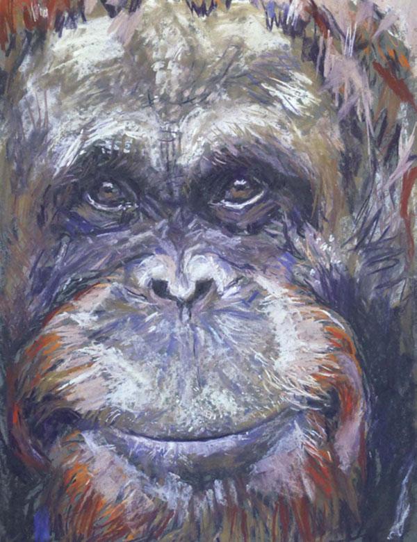 gorilla_thumb