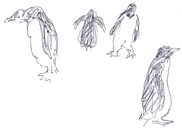 sketch_penguins